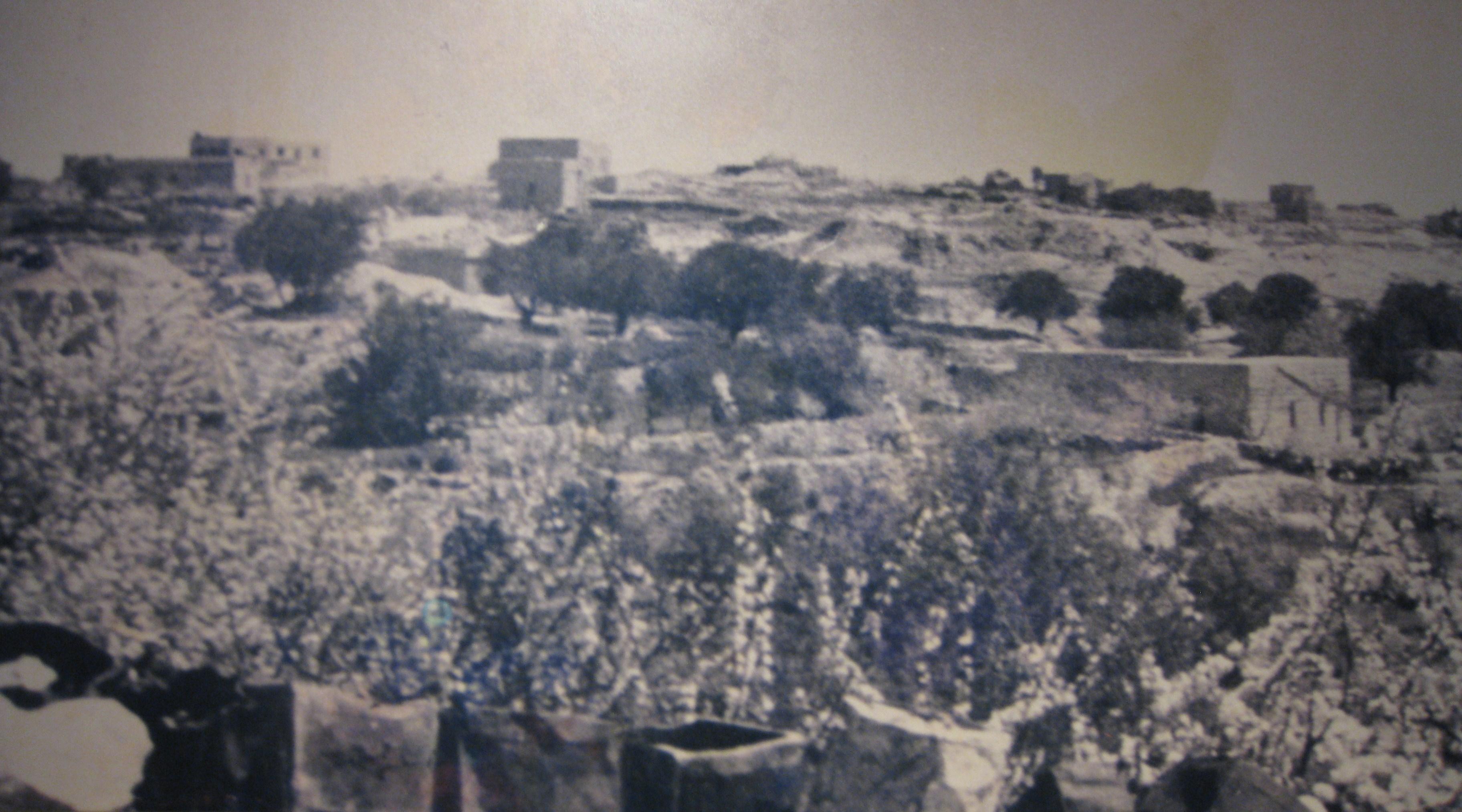 דיר יאסין ב-1948