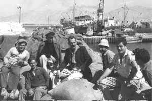 Stevedores take a break in Eilat's old port, 1960