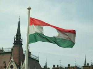המורדים גזרו מן הדגל ההונגרי את הסמל הקומוניסטי שבמרכזו והדגל הגזור היה לדגל המרד