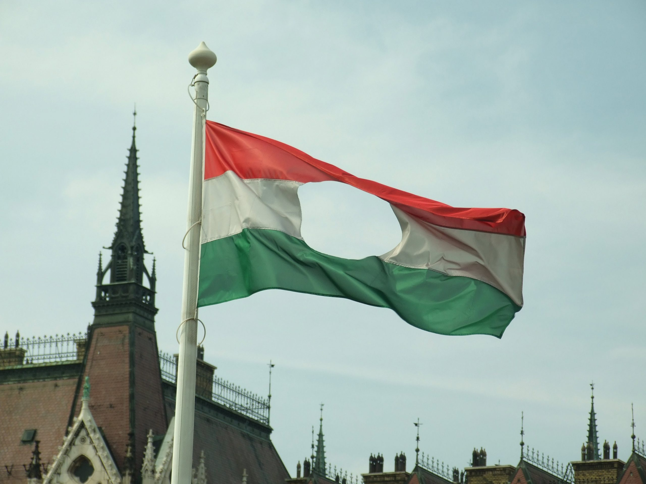The Hungarian rebels cut the Communist emblem out of the middle of the Hungarian flag, leaving a torn a three color flag as the symbol of the revolt