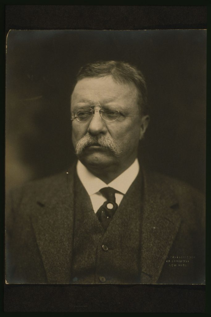 No less of a Zionist: Theodore Roosevelt