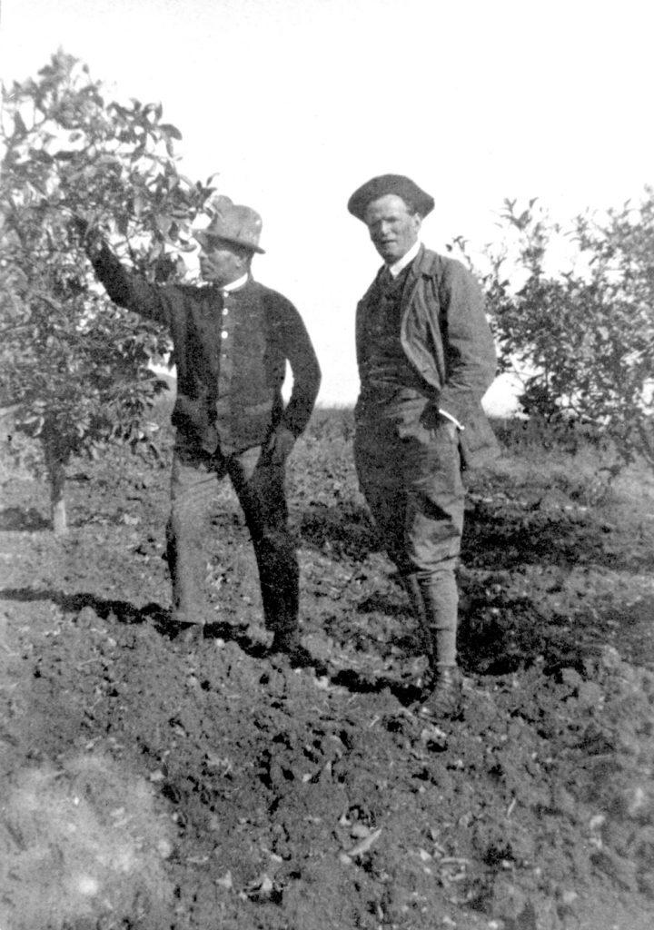 בזכות העניין המקצועי המשותף היה יוסף טריידל אחד מידידיו הבודדים של אהרנסון. יוסף טריידל (משמאל) והצייר יעקב נוסבאום במטע ההדרים של חוות טריידל, 1925