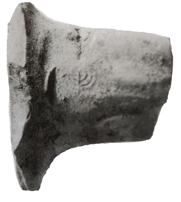 Fragment of a pottery handle bearing a seal imprint of the seven-branched menorah. Found in archaeological excavation in Kfar Ginis (near Lod). From the beginning of the Umayyad period.