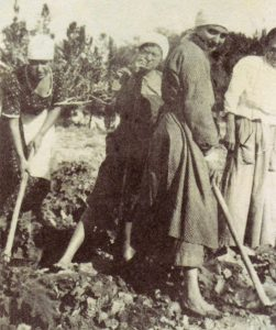 Rahel at work on Kibbutz Degania, 1920
