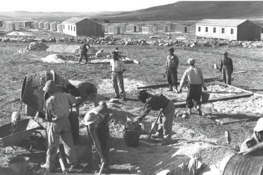 העלייה שעיצבה את דמותה של הפריפריה. עולים עוסקים בבניית מחנה עולים במושב אשקלון, 1950