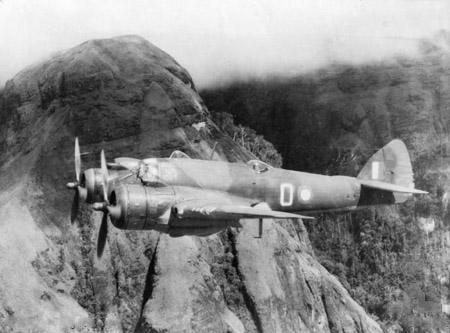 הבריסטול בופייטר היה אחד ממפציצי הקרב המרכזיים שיוצרו בבריטניה במלחמת העולם השנייה. קרוב ל־6,000 מטוסים מסוג זה יוצרו לאורך המלחמה, והם השתתפו בקרבות כמעט בכל זירות הלחימה, בשירות חילות האוויר של בריטניה, אוסטרליה וארצות הברית. בריסטול בופייטר בריטי