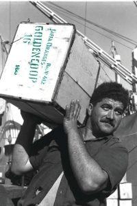 """מקצועיותם של הסבלים היהודים מסלוניקי, המבוססת על דורות של סבלים שהועסקו בנמל היווני החשוב והוותיק, הפכה אותם בן לילה לפועלים המיומנים והמבוקשים ביותר בנמל חיפה. סבל מעמיס תפוזים על ספינה בנמל חיפה, 1948 צילום: הוגו מנדלסון, לע""""מ"""