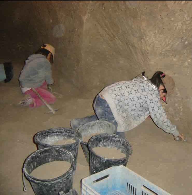 Archaeologists for a day. Young enthusiasts plumb the depths of Tel Maresha, digging up earth and often artifacts. Every bucket of dirt removed is finely sifted, so not even the smallest fragments are lost. In thirty years of excavation, thousands of cubic meters of earth have been dislodged this way