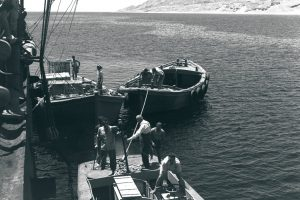 Cargo being unloaded in Eilat's port, 1951