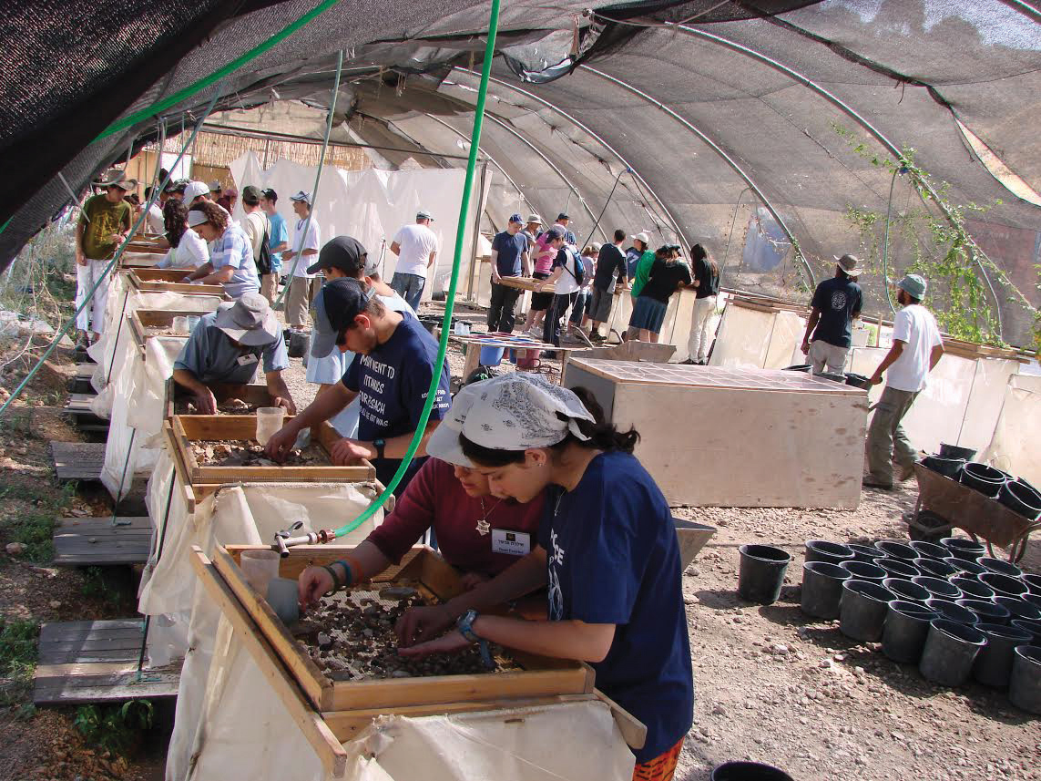 Volunteers and archaeologists sift through buckets of dirt in Zurim Valley