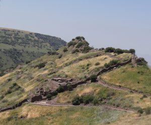 עיר על מדרון. מבט מרחוק על גמלא מאפשר לראות את שרידי המבנים הנתמכים אחד בשני ואת הקמרון בצורת דבשת שנתן לעיר את שמה
