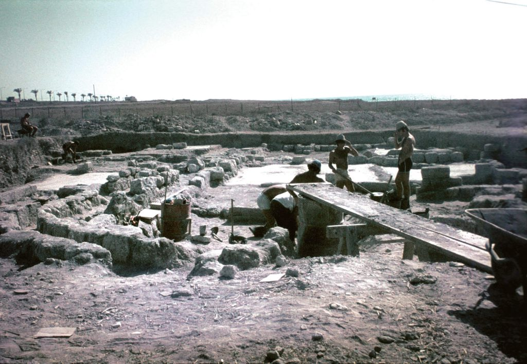 חפירות ארכאולוגיות בתל שקמונה, 1992