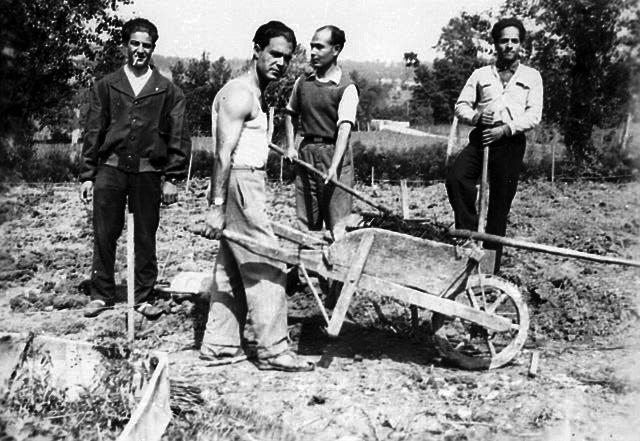 שאיפותיו הציוניות של רבי כלפון לא מומשו, אך הן הדביקו אחדים מהצעירים שבקהילתו. יהודים בהכשרה לעבודה חקלאית, ג׳רבה, סביבות 1945