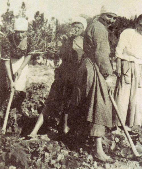 חל עובדת בדגניה, 1920
