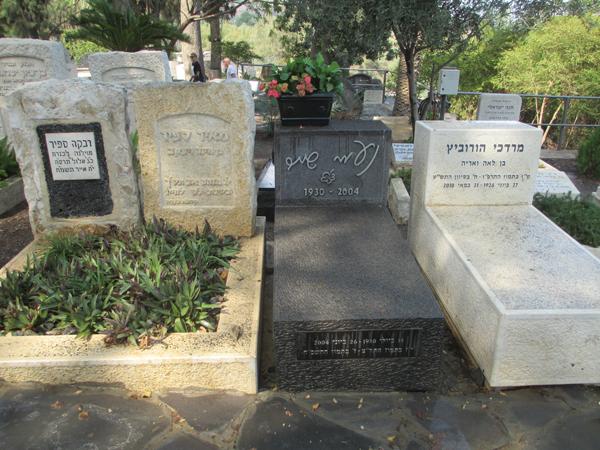 קברה של המשוררת נעמי שמר בבית העלמין בכינרת