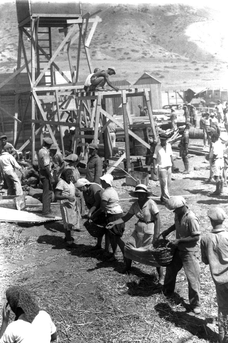 לפני קום המדינה לא חסרו מתנדבים להתיישבות. הקמת קיבוץ עין גב, 1937