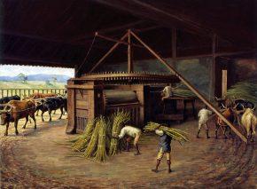 מיליוני אנשים שועבדו באמריקה כדי לייצר סוכר לפועלי אירופה. בנדיטו קליסטו, מטחנת סוכר בקמפינאס, 1830. מוזאון פאוליסטה, סאו פאולו