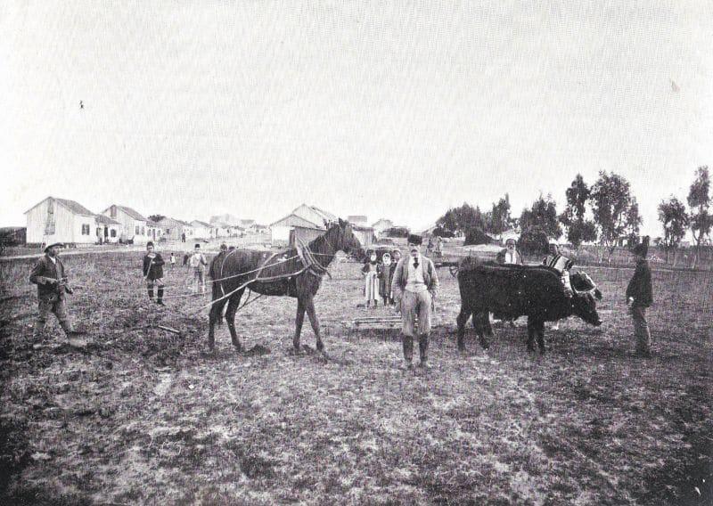 איכרי המושבות לא תמיד הסכימו לשלם יותר כדי להציע עבודה לצעירים היהודים שרצו להיות פועלים חקלאים. מתיישבים בבאר טוביה בסוף המאה ה-19