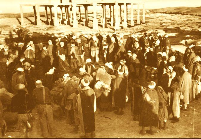 לקראת תחילת המסע של מדריכי תנועות הנוער למצדה בשבט תש''ב, שכירות גמלים בכפר יטא