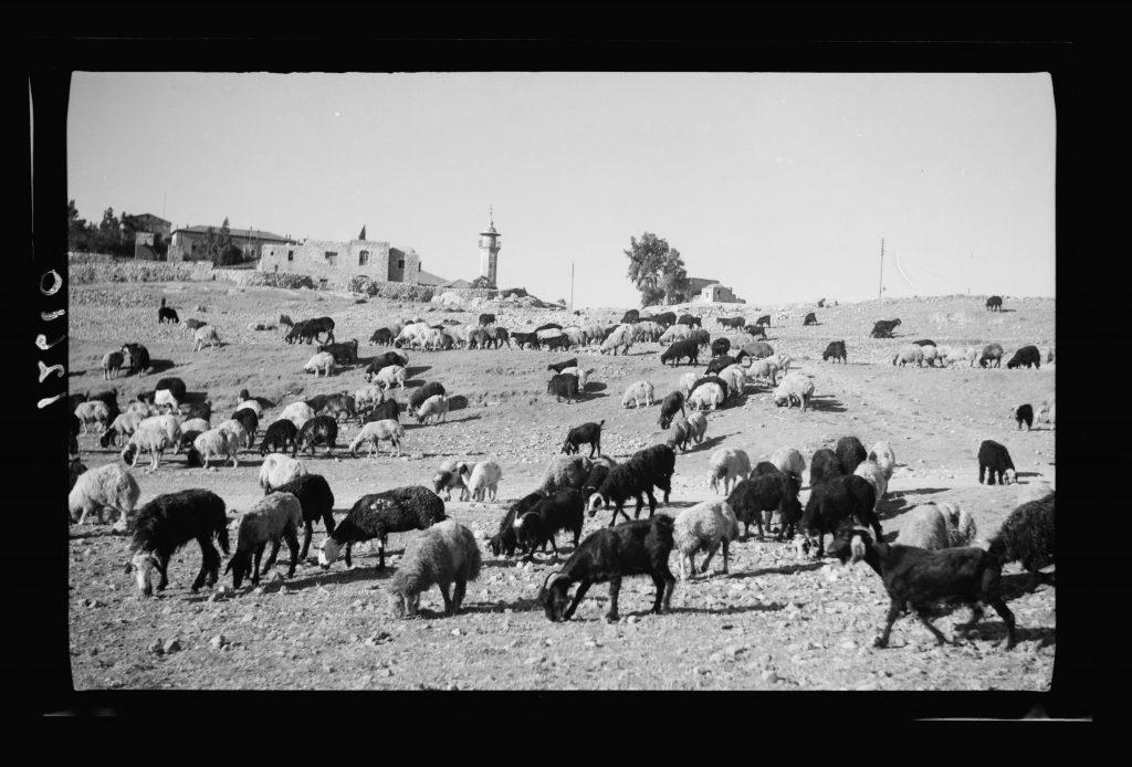 החיים מחוץ לחומות אפשרו לעשירים לחיות ברווחה בבתי מידות. שכונת שייח' ג'ראח בראשית שנות הארבעים